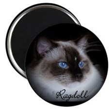 Seal Mitted Ragdoll Magnet