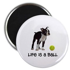 Boston Terrier Life Magnet