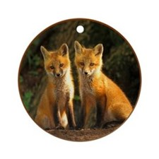 Baby Red Fox Foxes Ornament (Round)