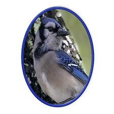 Blue Jay Bird Nature Yule Tree Oval Ornament