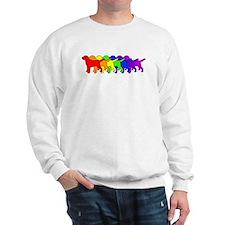 Rainbow Labs Sweatshirt