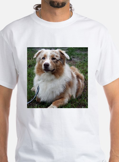 Red Merle Aussie Shirt