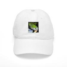 Peter the Quaker Parrot Baseball Cap