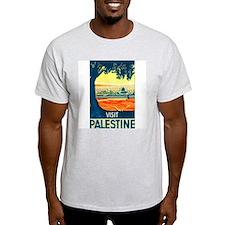 Palestine Travel (Front) Ash Grey T-Shirt