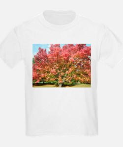 Signs of Fall<br> T-Shirt
