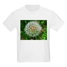 Wish<br> T-Shirt