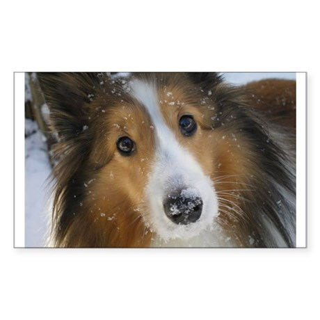 Snow Whiskers Rectangle Sticker