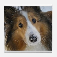 Snow Whiskers Tile Coaster