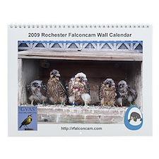 2009 Rochester Falconcam Calendar