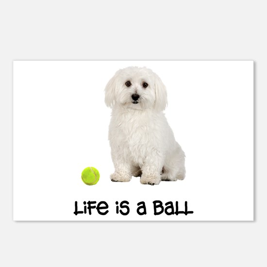 Bichon Frise Life Postcards (Package of 8)