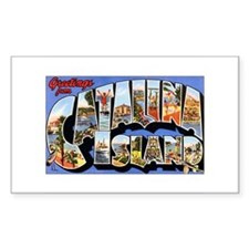 Catalina Island Rectangle Decal