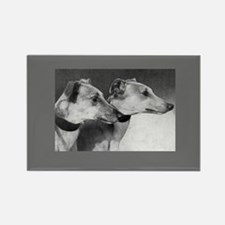 Black & White Greyhound Photo Rectangle Magnet