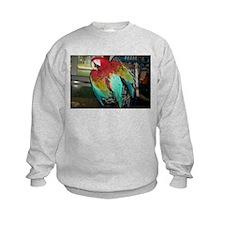 Jackson the Macaw Sweatshirt