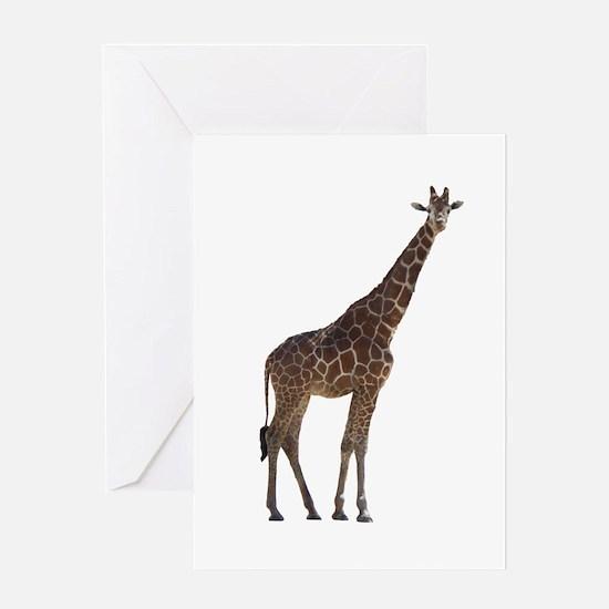 giraffe13 Greeting Card