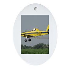 Ag Aviation Oval Ornament