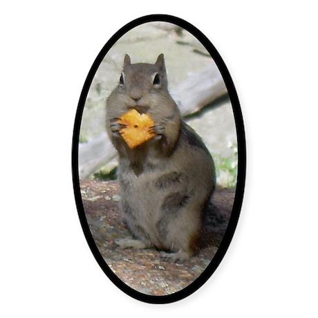 Chipmunk Eating a Cheez-it Sticker