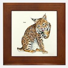 Bobcat Framed Tile