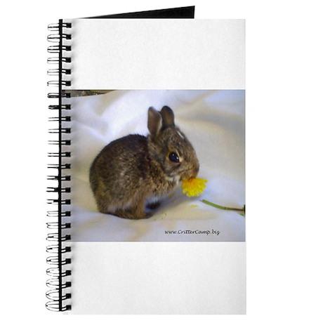 Hoppity 2 Journal