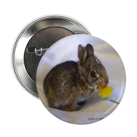 "Hoppity 2 2.25"" Button (100 pack)"