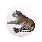 tiger7 3.5
