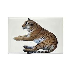tiger7 Rectangle Magnet