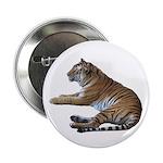 tiger7 2.25