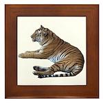 tiger7 Framed Tile