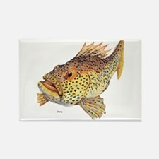 Coney Tropical Fish Rectangle Magnet