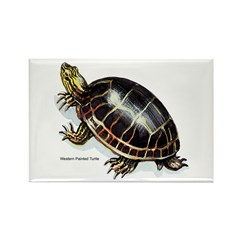Western Painted Turtle Rectangle Magnet (10 pack)