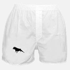 Unique Cute bulldog Boxer Shorts