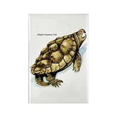Snapping Turtle Rectangle Magnet (10 pack)