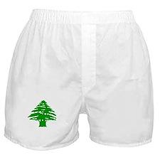 Green Cedar Tree Boxer Shorts