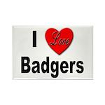 I Love Badgers Rectangle Magnet (10 pack)