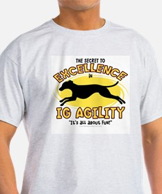 The Secret to IG Agility T-Shirt