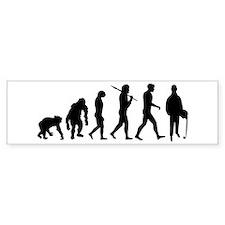 Accountant Evolution Bumper Sticker