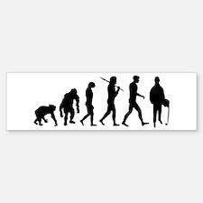 Accountant Evolution Sticker (Bumper)
