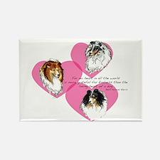 Sheltie Hearts Rectangle Magnet