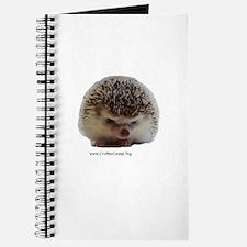Prickleball 1 Journal