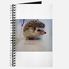Prickleball Journal