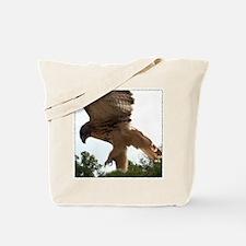 Ostara, Red Tailed Hawk Landi Tote Bag