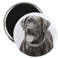 """Funny Yellow lab 2.25"""" Magnet (100 pack)"""