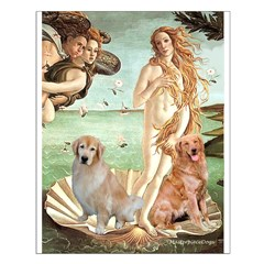 Venus / Two Golden Retrievers Posters