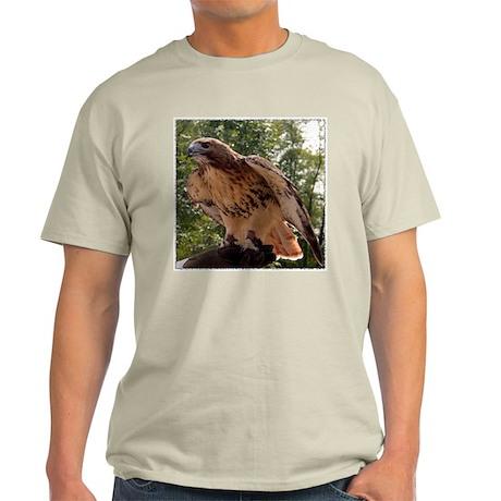 Red Tailed Hawk Ruffled Feath Ash Grey T-Shirt