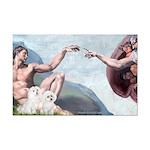 Creation/Maltese + Poodle Mini Poster Print