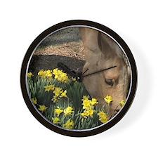 Palomino Horse Wall Clock, tinharefarm