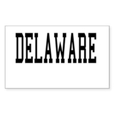 Delaware Rectangle Decal