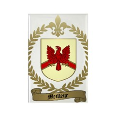 MEILLEUR Family Rectangle Magnet (100 pack)