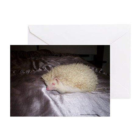 Snuffy Greeting Cards (Pk of 10)