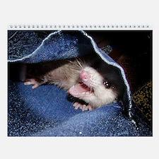 Baby Opossum Wall Calendar