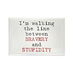 Walk Line Bravery Stupidity Rectangle Magnet (10 p